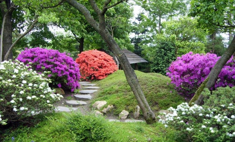Ботанический сад в Уфе