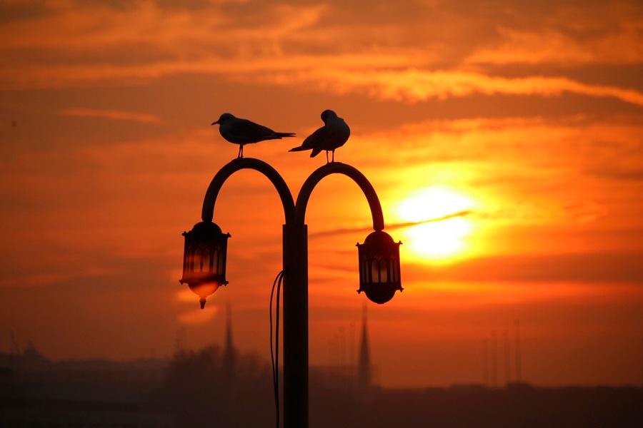 Комфортный сезон для отдыха в Турции