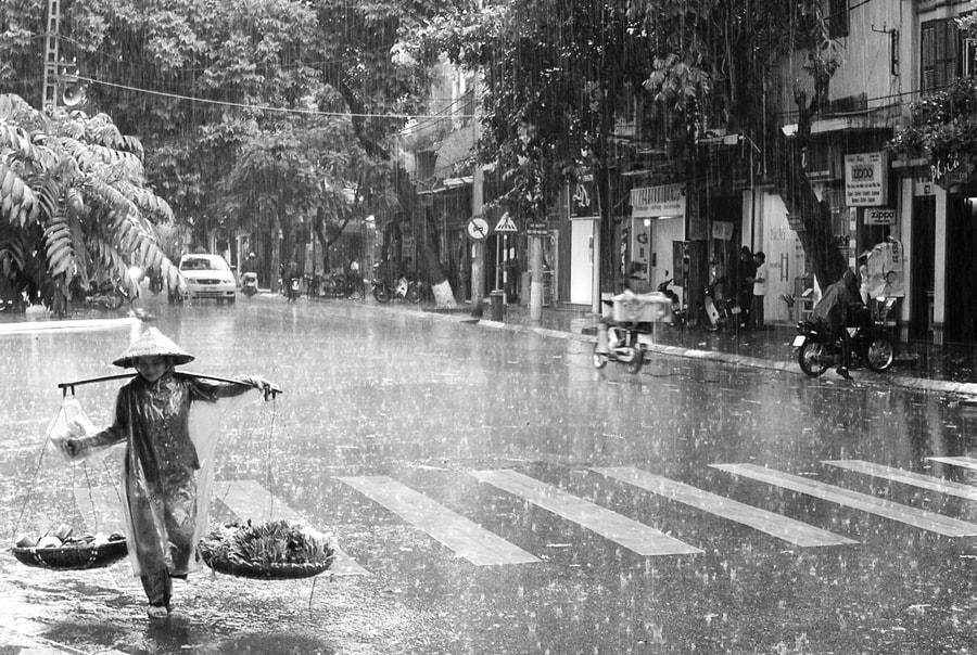 Дождь во Вьетнаме