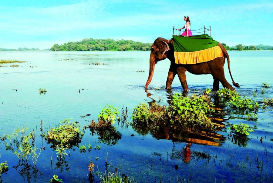 Сезоны отдыха на Шри-Ланке