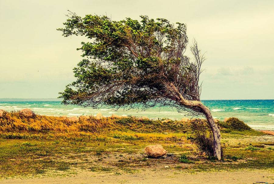Низкий сезон на Кипре