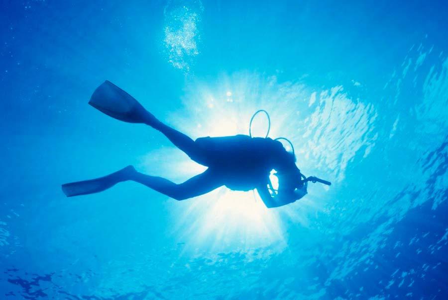 Центр подводного плавания «Катран» фото