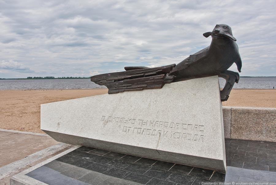 Памятник тюленю фото