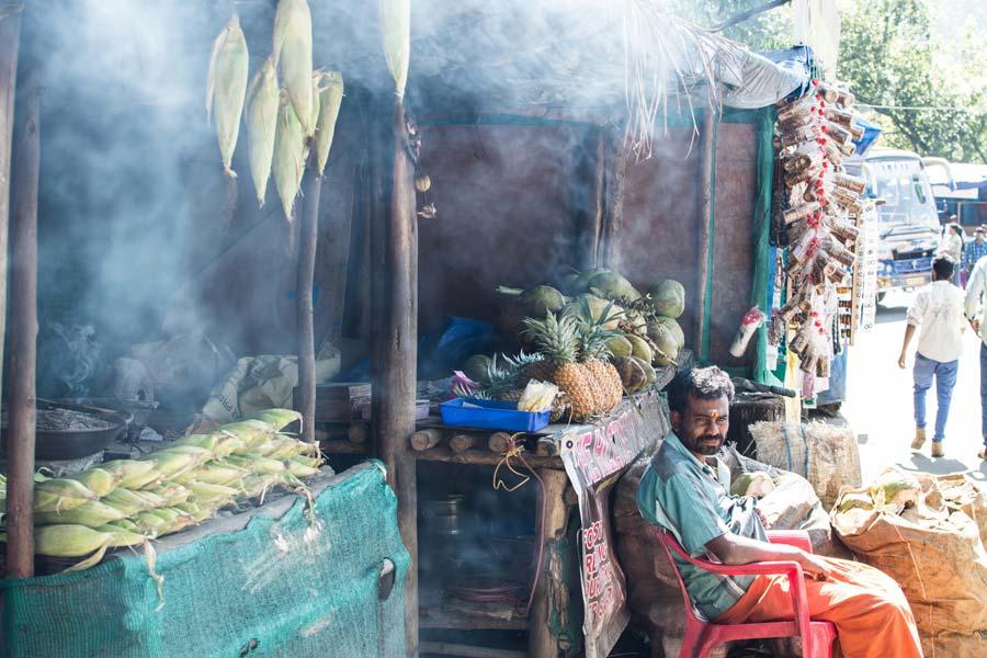 Описание индийского штата Керала