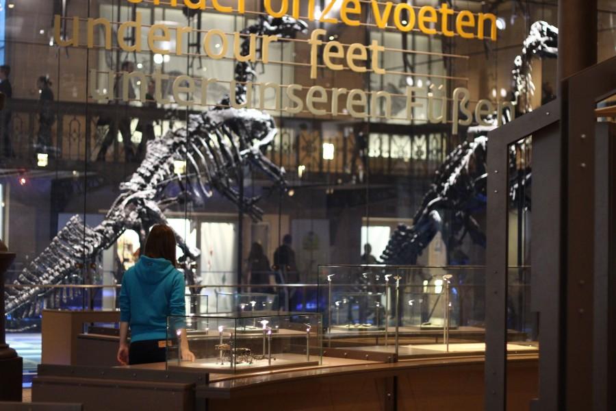 Ольга Зазуля в музее в Брюсселе