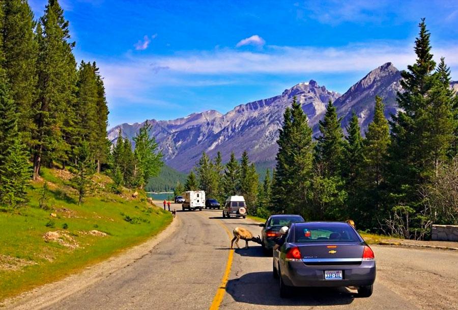 Дорога-в-Канаде