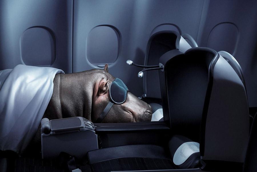 Как отдохнуть в самолете