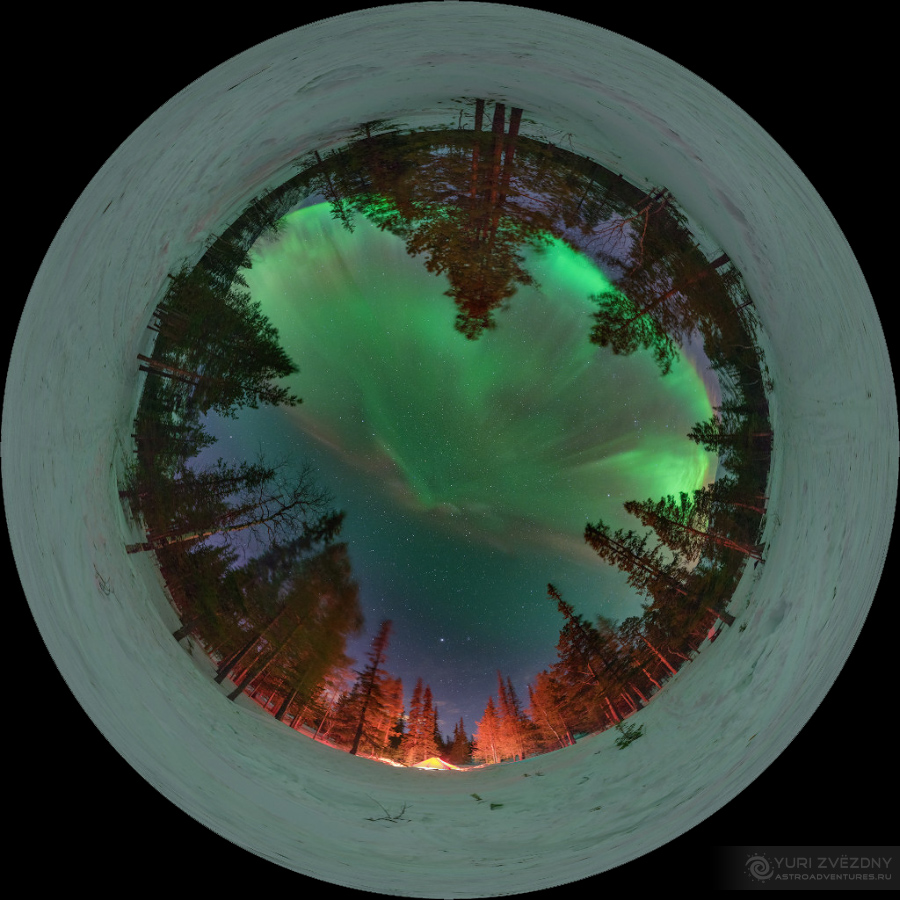 icon aurora over the forest