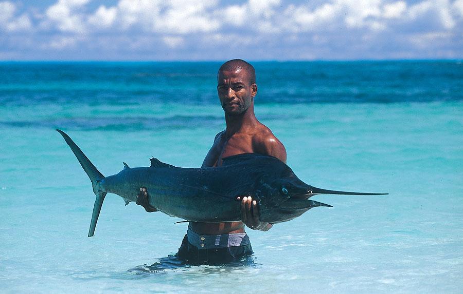 Сейшельские острова путешествие