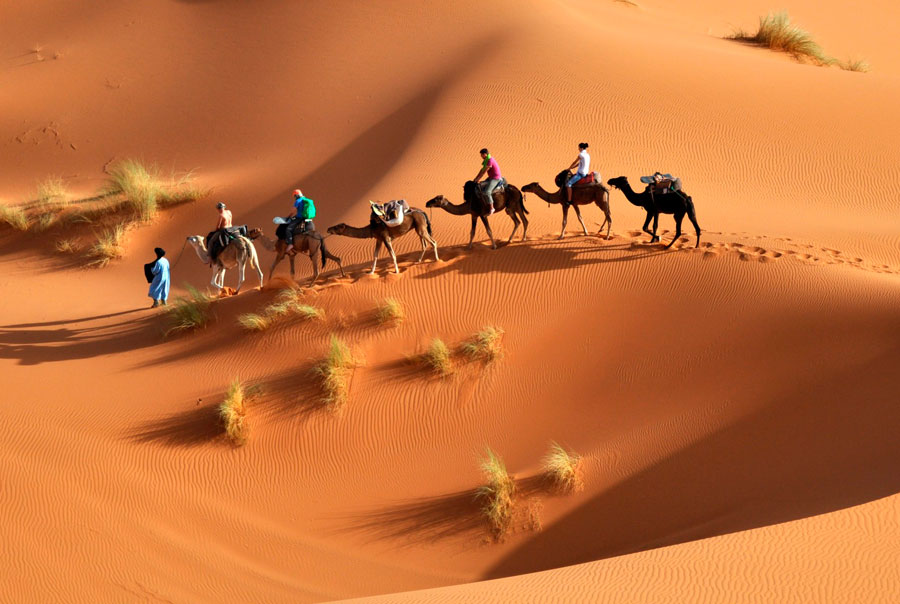 Транспортное-сообщение-в-Тунисе