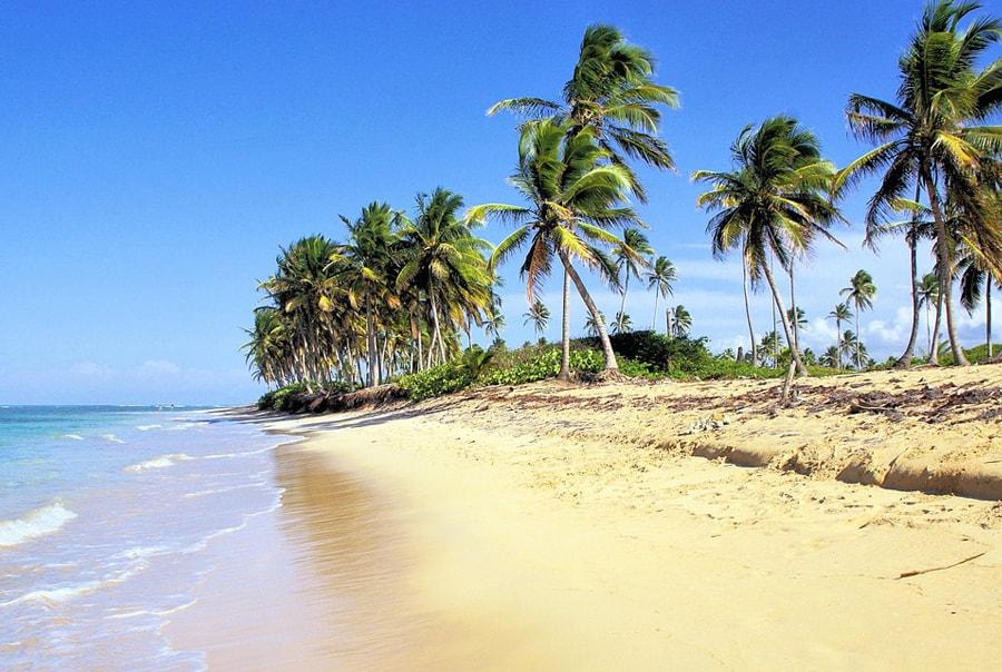 Идеальный сезон для отдыха в Доминикане