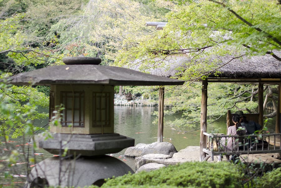 Сад в Токио