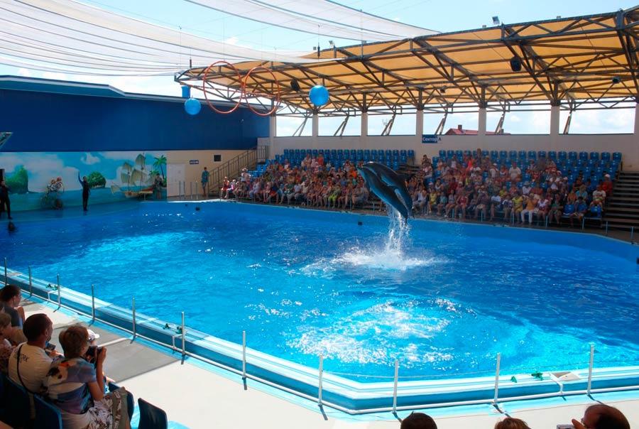 Дельфинарий «Немо»: фото