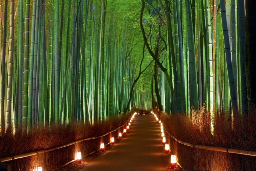 Необычные природные достопримечательности Японии
