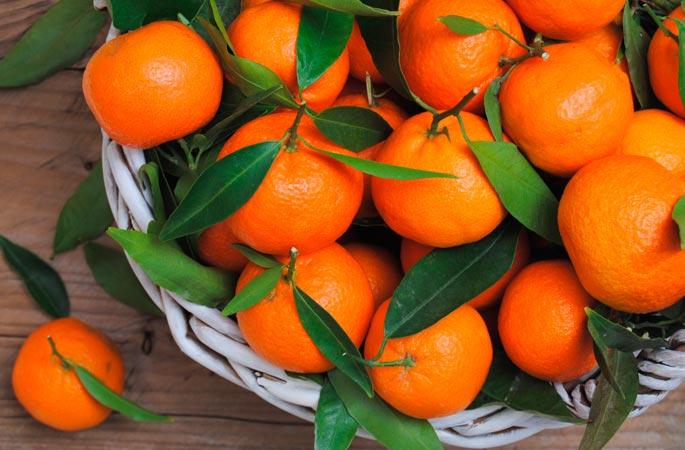Какие фрукты растут в Сочи и где их покупать